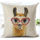 RubeyLiza - Animals - Alpaca wearing Glasses