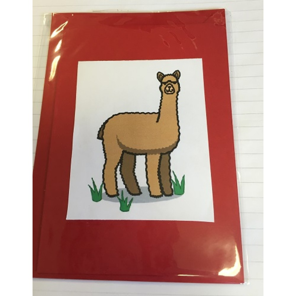 Alpaca Greeting Cards - Comical Camelid Standing