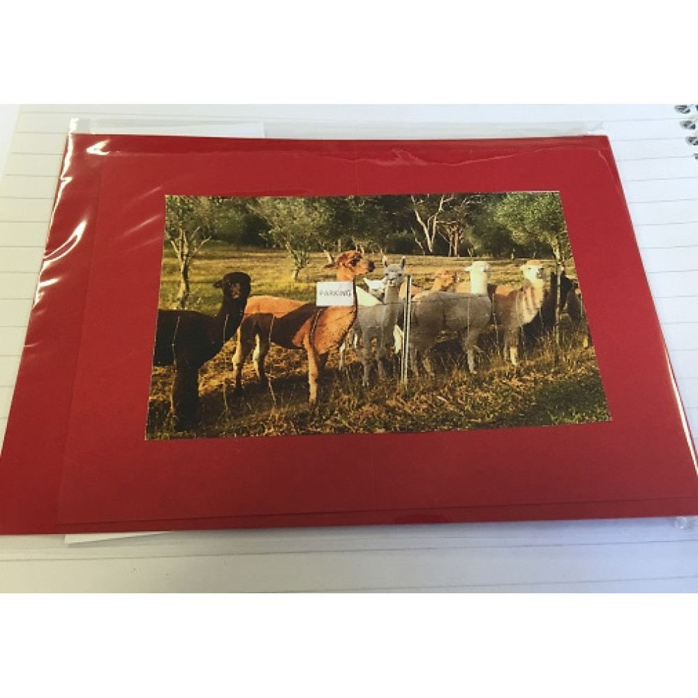 Alpaca Greeting Cards - Parking Zone