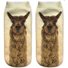 Women's  Alpaca Image Low Cut Ankle Sport Socks